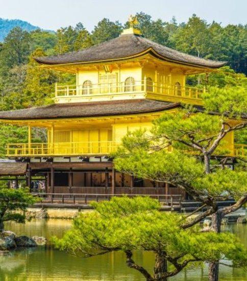 【関西開催】7月京都でレベル1開催します♪