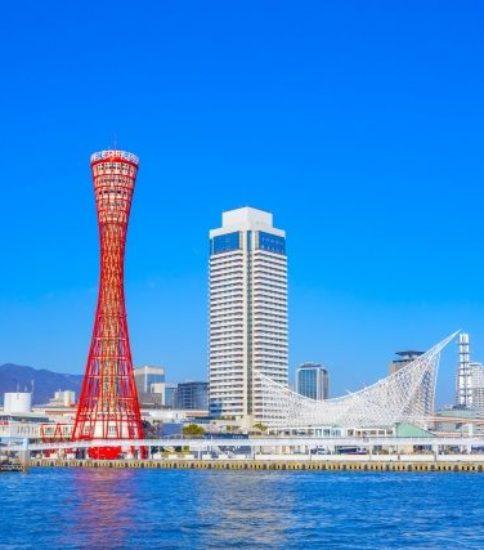 関西開催11月レベル1講座